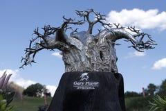 WINNERS TROPHY. NOVEMBER 17: Gary Player Charity Invitational Golf Tournament November 17, 2013, Sun City, South Africa stock photos