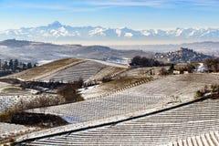 Winniców wzgórza pod śniegiem w Langhe regionie w Włochy Fotografia Stock