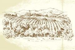 Winnica Francja Obrazy Stock