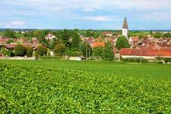 Winnica Nuit święty Georges w Burgundy Francja Obrazy Stock