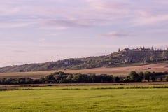 Winnica przy Laucha, Niemcy Fotografia Royalty Free