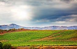 Winnica w górach Zdjęcie Stock