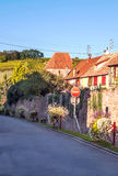 Winnicy Alsace Obraz Stock