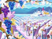 Winnicy i winogron wiązki Zima sezonu krajobraz royalty ilustracja