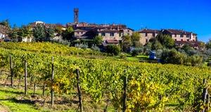 Winnicy i wioski Tuscany, Chianti - sławny wino region obraz stock