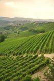 Winnicy i wzgórza Langhe region Piemonte, Włochy Obrazy Royalty Free