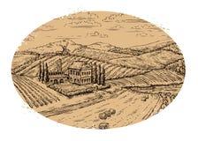 Winnicy krajobraz etykietka retro Ręka rysujący wektorowy rocznika gospodarstwo rolne, rolnictwo ilustracji