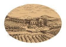 Winnicy krajobraz Pociągany ręcznie rocznika gospodarstwa rolnego rolnictwo również zwrócić corel ilustracji wektora royalty ilustracja
