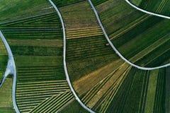 Winnicy kształtują teren na wzgórzu od wierzchołka z trutniem Zdjęcia Stock