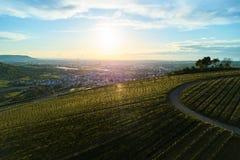 Winnicy kształtują teren na wzgórzu od wierzchołka z trutniem, dji Zdjęcia Stock