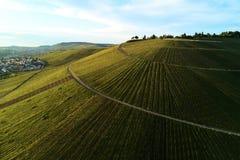 Winnicy kształtują teren na wzgórzu od wierzchołka z trutniem, dji Fotografia Royalty Free