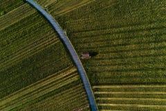 Winnicy kształtują teren na wzgórzu od wierzchołka z trutniem, dji Obrazy Stock