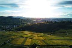 Winnicy kształtują teren na wzgórzu od wierzchołka z trutniem, dji Fotografia Stock