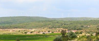 Winnicy w Languedoc Roussillon Zdjęcie Stock