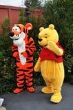 Winnie-de-Pooh en Tigger in de Wereld van Disney Stock Afbeelding