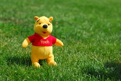 Winnie The Pooh. Stuffed toy on a green grass Stock Photography
