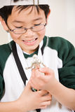 Winning boy with his medal and trophy. An asian boy looking at his winning sport medal and trophy Royalty Free Stock Image