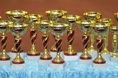 Winning cups Royalty Free Stock Image