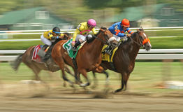 Winning the Evan Shipman Stakes at Saratoga. SARATOGA SPRINGS, NY - SEPT 4: Jockey Javier Castellano (pink cap) and Royal Posse surge past competitors to win The Royalty Free Stock Images