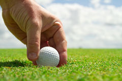 Winning in golf. Hand taking golf ball from the hole Royalty Free Stock Image
