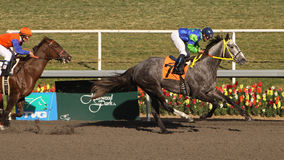 Winning Her First Race Royalty Free Stock Photos