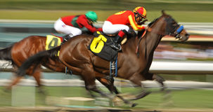 Winning His First Race Royalty Free Stock Images