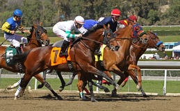 Winning His First Race Royalty Free Stock Photography