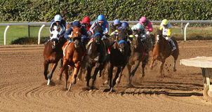 Winning His First Race. ARCADIA, CA - DEC 26: Jockey Joseph Talamo (dark blue cap on left) leads the field en route to victory aboard 2 year-old colt Micks stock photography