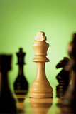 Winning king chess piece Stock Images