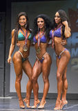 Winning Pro Bikini Threesome. Curvaceous Michelle Sylvia, winner of the pro bikini competition is flanked by runner-up Lauralie Chapados left and Enjoli Enriquez Royalty Free Stock Images
