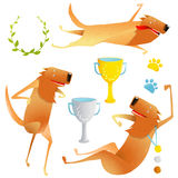 Winning Red Happy Dog Contest with Cups and Medals Stock Photography