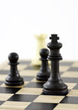 Winning Strategy. Chess Pieces on a board showing the King. The shot can be a business metaphor relating to a winning strategy or leadership. Main focus is on royalty free stock images