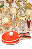Winning tennis tournaments Royalty Free Stock Photo