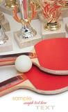 Winning tennis tournaments Stock Image