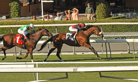 Winning a Turf Handicap Race. ARCADIA, CA - OCT 17: Gotta Have Her (#2) and Tyler Baze hold off Pasar Silbano and David Flores to win the Sen. Ken Maddy Handicap stock images