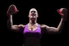 Winning woman cheering with arms raised Stock Images