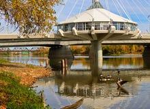 Winnipeg det härligt Arkivfoto