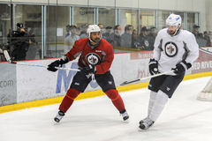Winnipeg Jets training camp Royalty Free Stock Photography