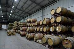 Wino baryłki przy wytwórnią win Santa Rita Zdjęcia Royalty Free