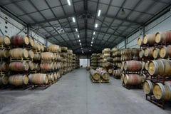 Wino baryłki przy wytwórnią win Santa Rita Obrazy Stock