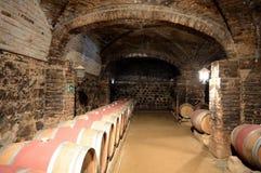 Wino baryłki przy wytwórnią win Santa Rita Obraz Royalty Free