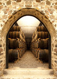 Wino baryłki Fotografia Royalty Free