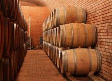 Wino baryłki w lochu Obrazy Royalty Free