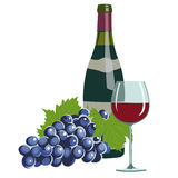 Wino butelka, wina szkło i winogrona, ilustracji