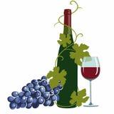 Wino butelka, wina szkło i winogrona, ilustracja wektor