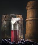 Wino butelka z winogronami i baryłką Zdjęcia Stock