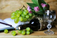 Wino butelki książkowy i szklany winogrono Zdjęcia Stock