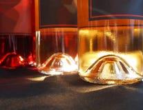 Wino butelki wykop z ręki Fotografia Royalty Free