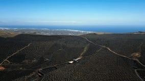 Wino dolina los angeles Geria, Lanzarote, wyspy kanaryjska zbiory wideo