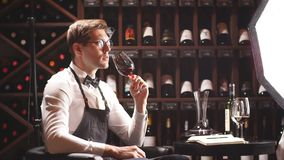 Wino ekspert trzyma szkło wino, spojrzenia przy odcieniem i odoru smak, degustating zbiory wideo